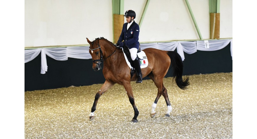 Andrea Sangiorgi is a top 10 ranked Dressage World Ranking List